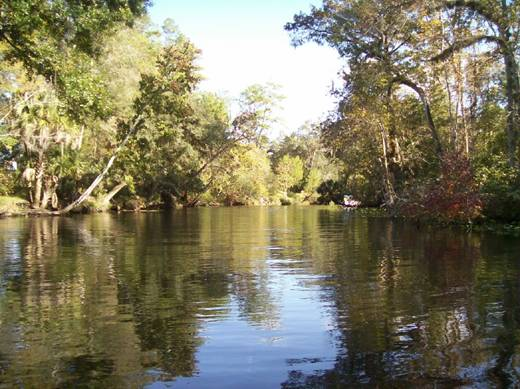 Recent Ocklawaha River picture